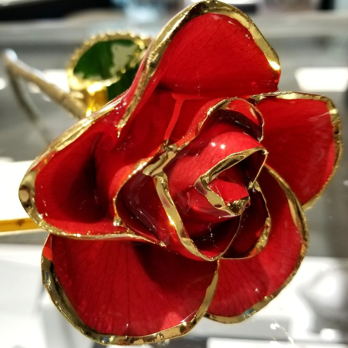 Northwood Jewelers Genuine 24k Gold Dipped Roses These Forever Last A Lifetime