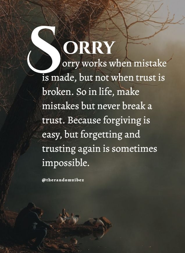 Inspirational Sayings About Sorry