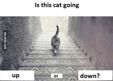 Up Or Down ?
