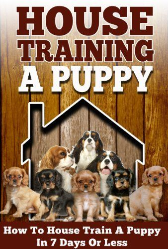 House Training A Puppy How To House Train A Puppy In 7 Days Or