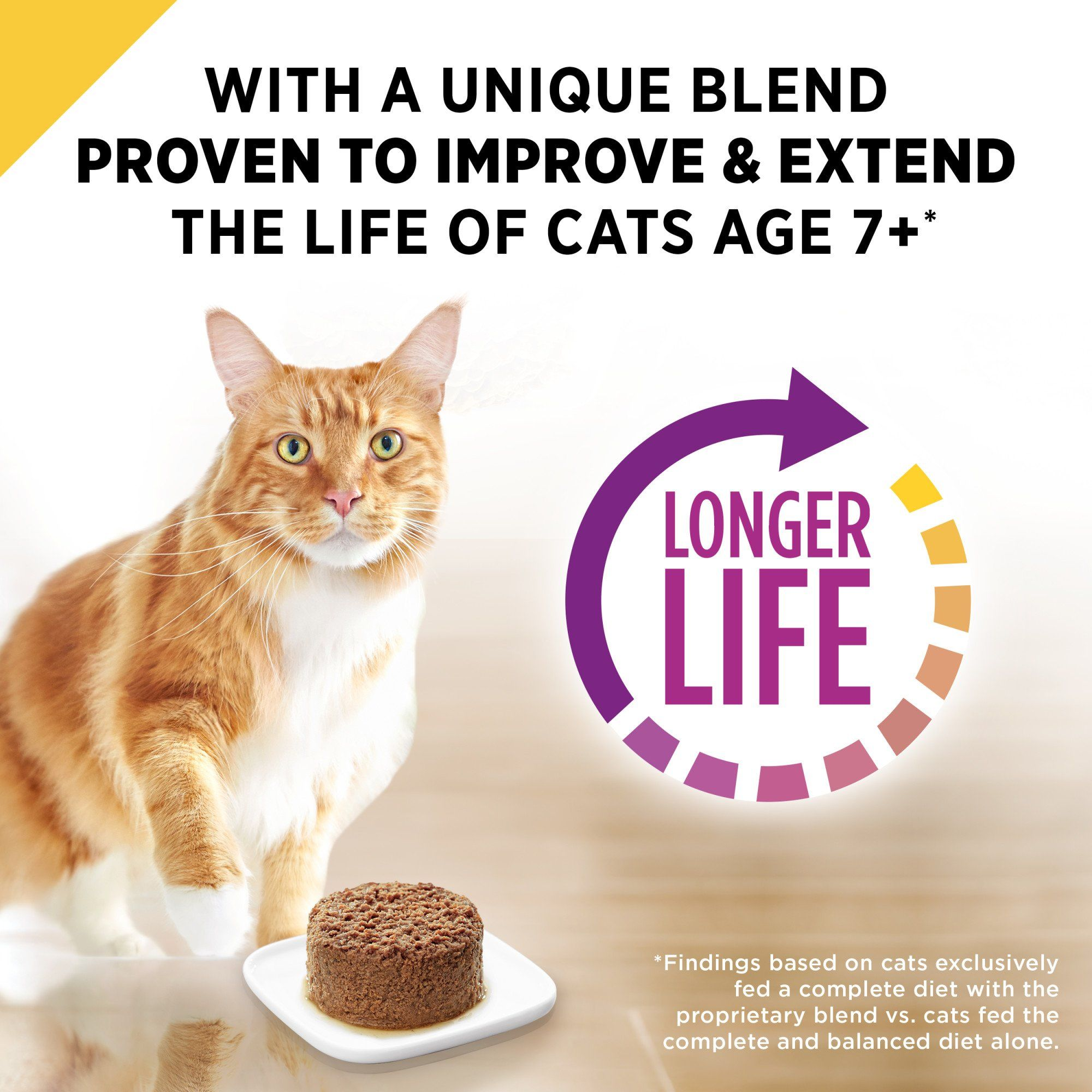 Purina Pro Plan Prime Plus Grain Free Classic Chicken Entree Adult 7 Wet Cat Food 3 Oz Case Of 24 24 X 3 Oz Purina Pro Plan Wet Cat Food