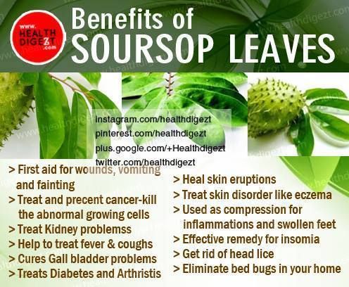 Soursop Juice Natural Health Benefits