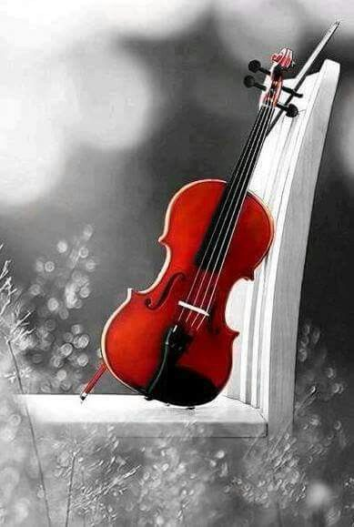 Pin By Ks On Music Memories Music Memories Violin Fantasy Love
