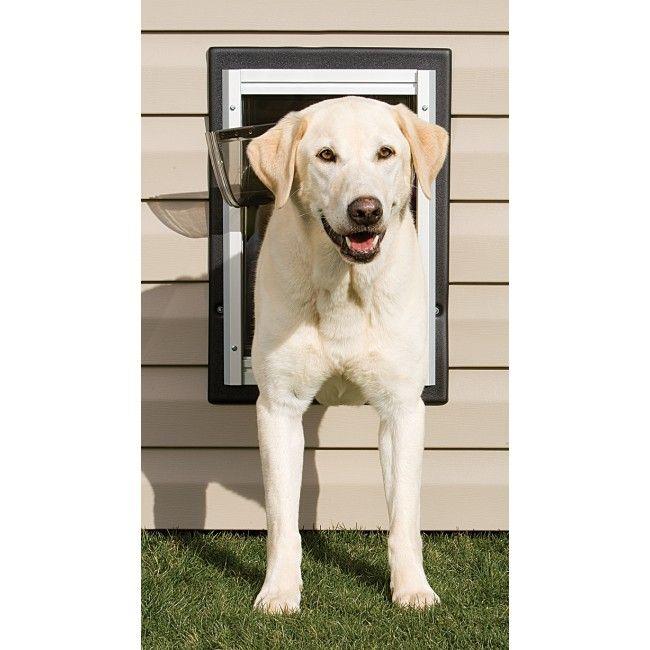 Petsafe Wall Entry Pet Door Pet Door Gate And Brain