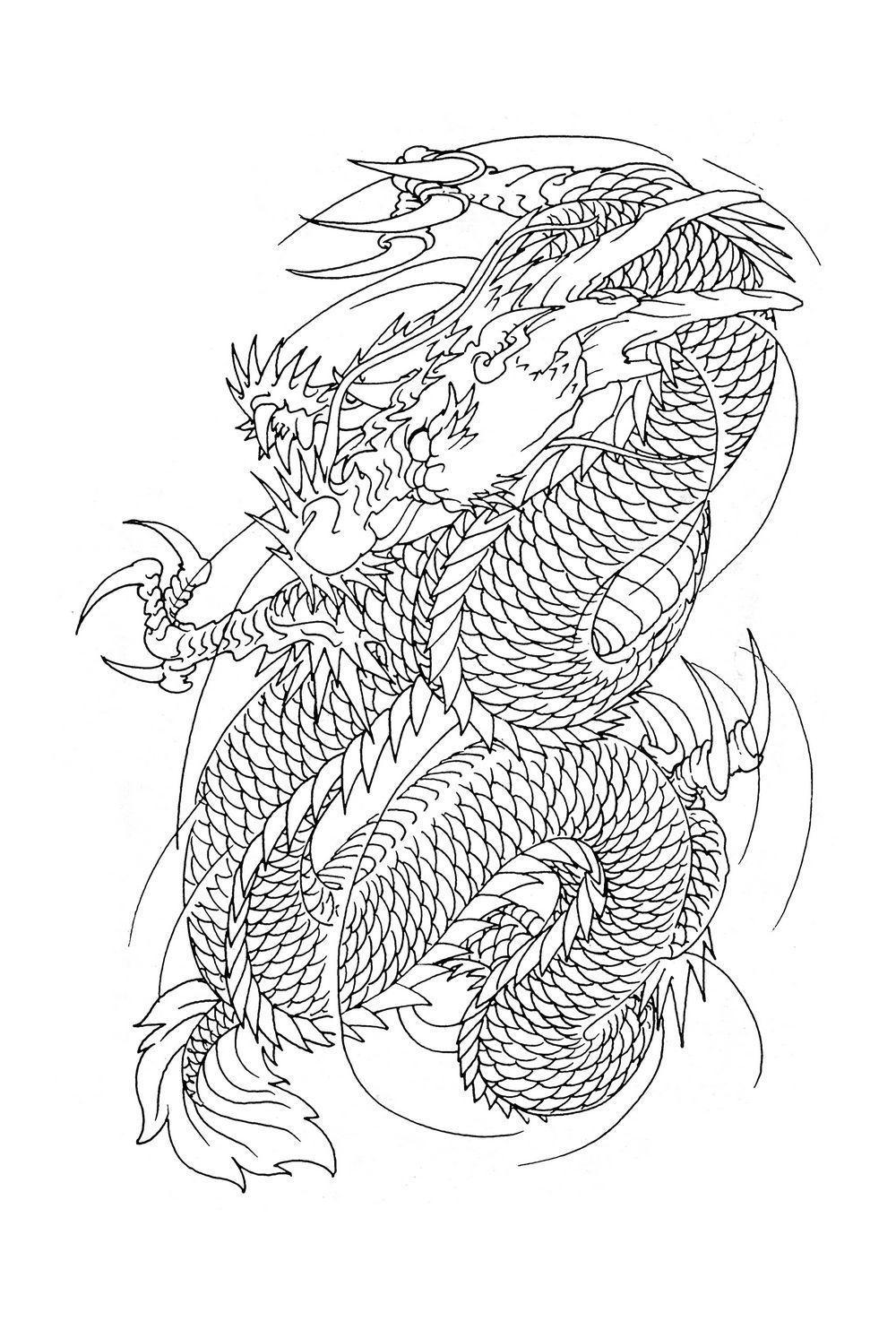 Dragon Sketch 2 from my book... | dragão desenho para tattoo | Pinterest
