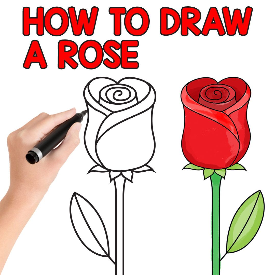 How To Draw A Rose Easy Step By Step For Beginners And Kids Easy Peasy And Fun Rose Step By Step Roses Drawing Flower Drawing