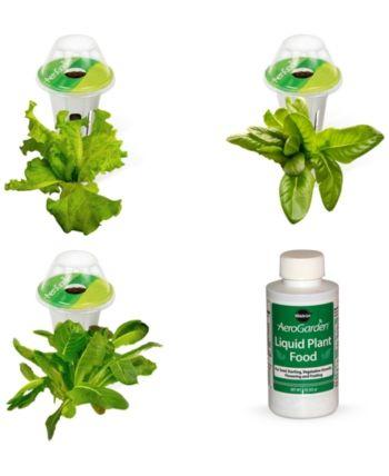 Aerogarden Heirloom Salad Green 3 Pod Refill Kit In 2019 400 x 300