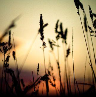Tagovi Slike Za Desktop Slika Hd Sunce Hd Priroda Slike
