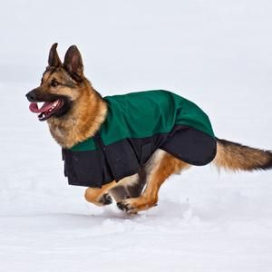 Dura-Tech® Insulated Waterproof Dog Coat  7f91e640b