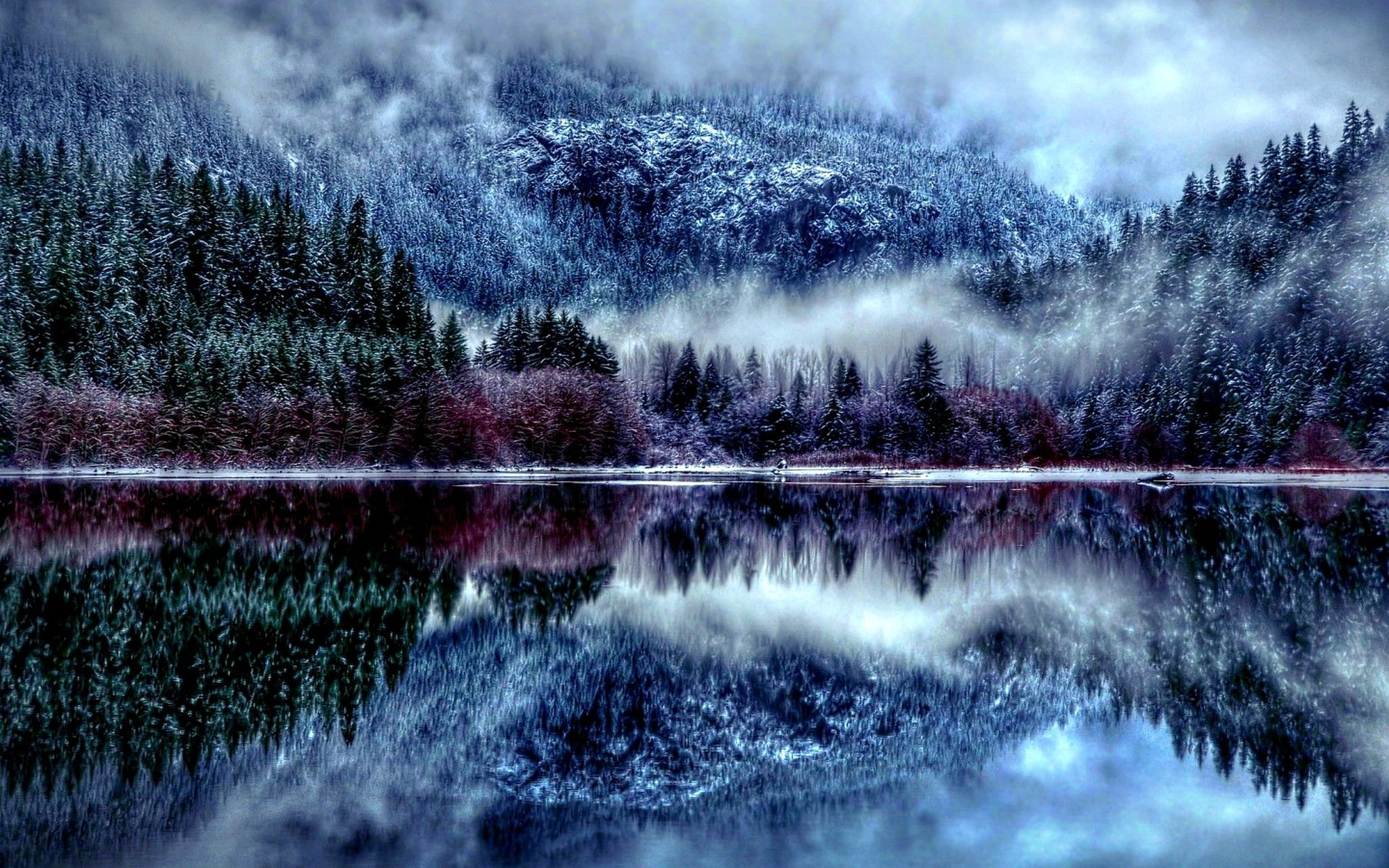 Winter Pine Forest Winter Forest Lake Winter Lake Winter Forest Winter Wallpaper