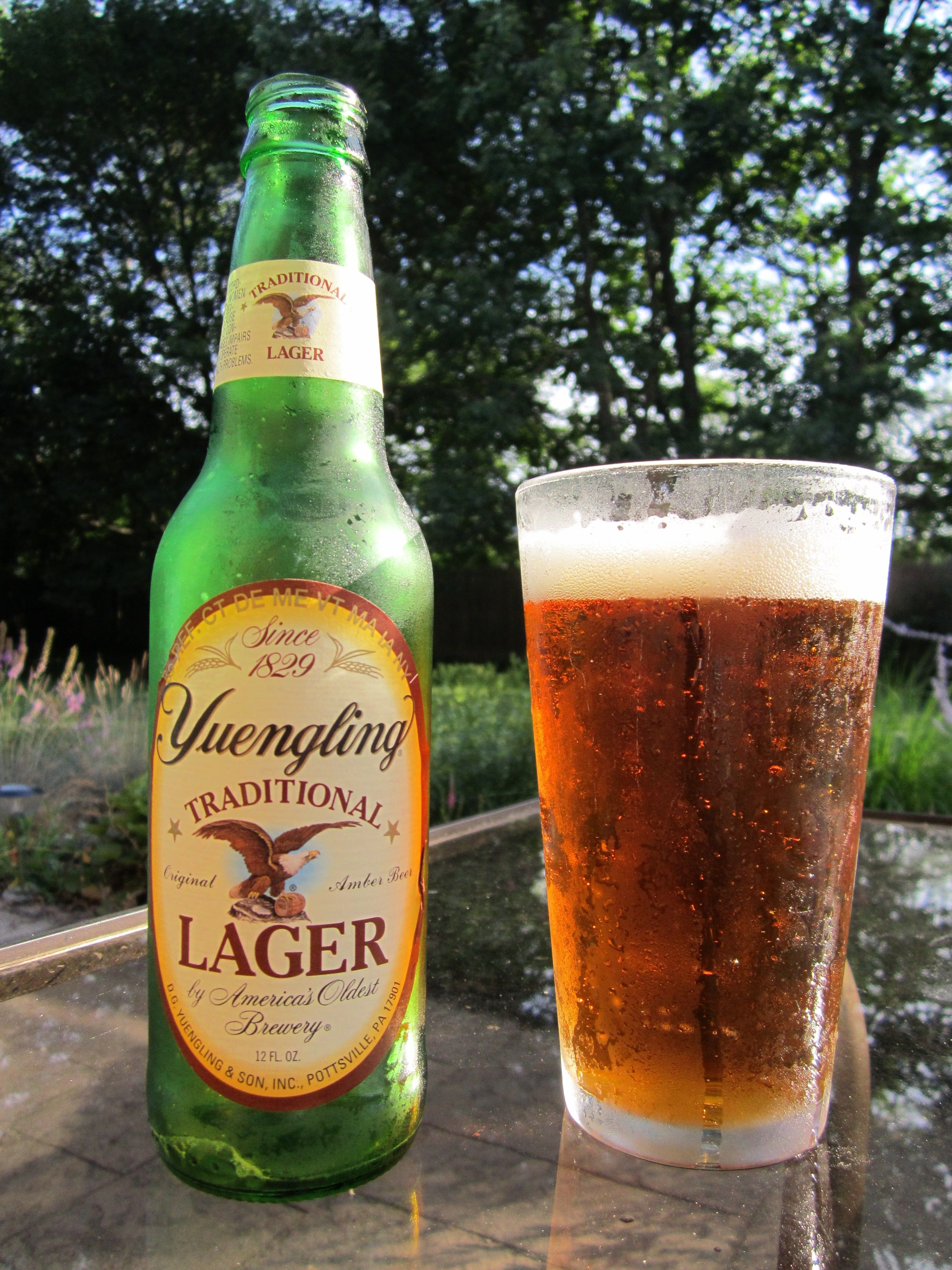 Yuengling Lager, Pottsville, Pa.      Yes Please. (especially off the tap)
