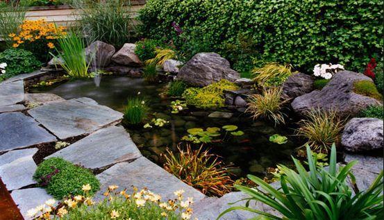 Como hacer un estanque en casa paso a paso jardines con vida pinterest estanques fuentes Como decorar un estanque