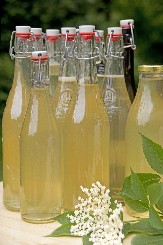Syrop Z Kwiatow Czarnego Bzu Izze Bottle Izze Drinks