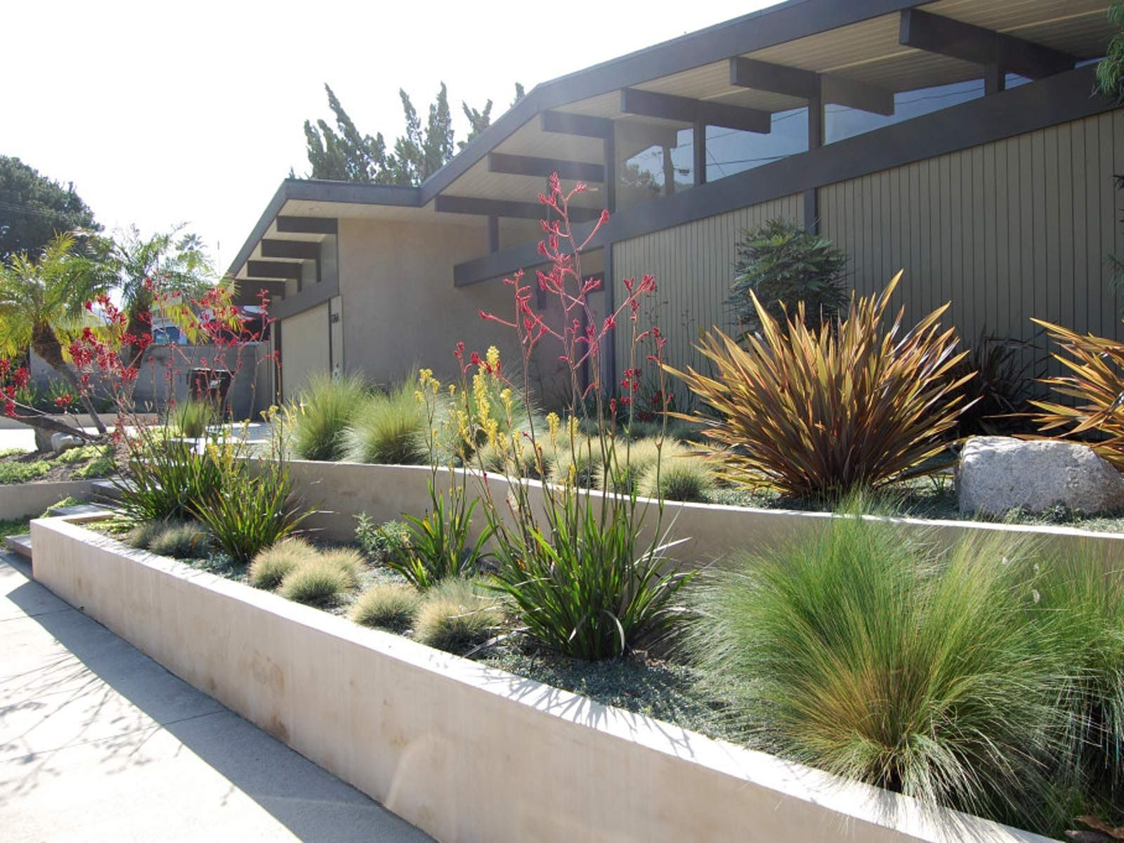 Modern Drought Tolerant Landscaping With Gravel And Small Plants Outdoor Garden Tropical For Natural Home Design