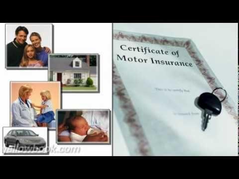 Quality Insurance Agency Vidor Tx Http Insurancequotebug