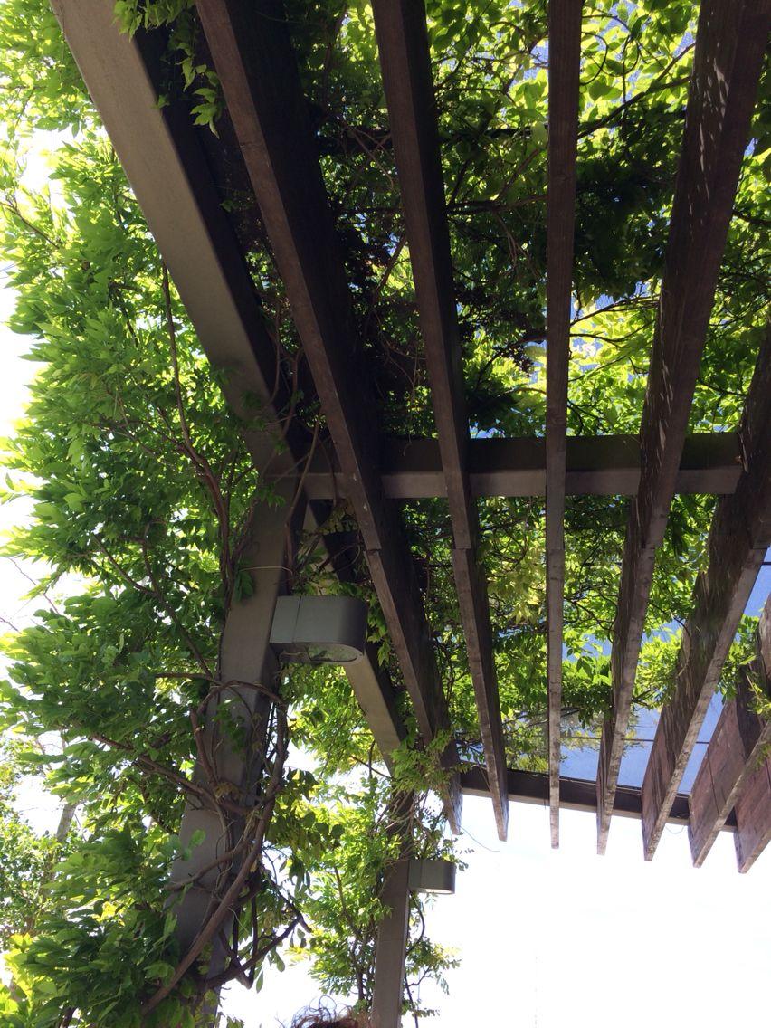 Idea for garden at lounge bar Lissabon