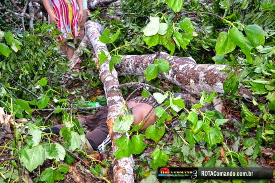 #Tragédia:Em São Francisco Homem morre esmagado por queda de árvore