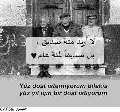 باللغة التركية Arabic English Quotes Book Quotes Words Quotes