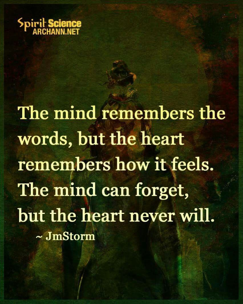 Philosophy Quotes About Love Pindebbie Wolfe On Say This  Pinterest  Wise Quotes