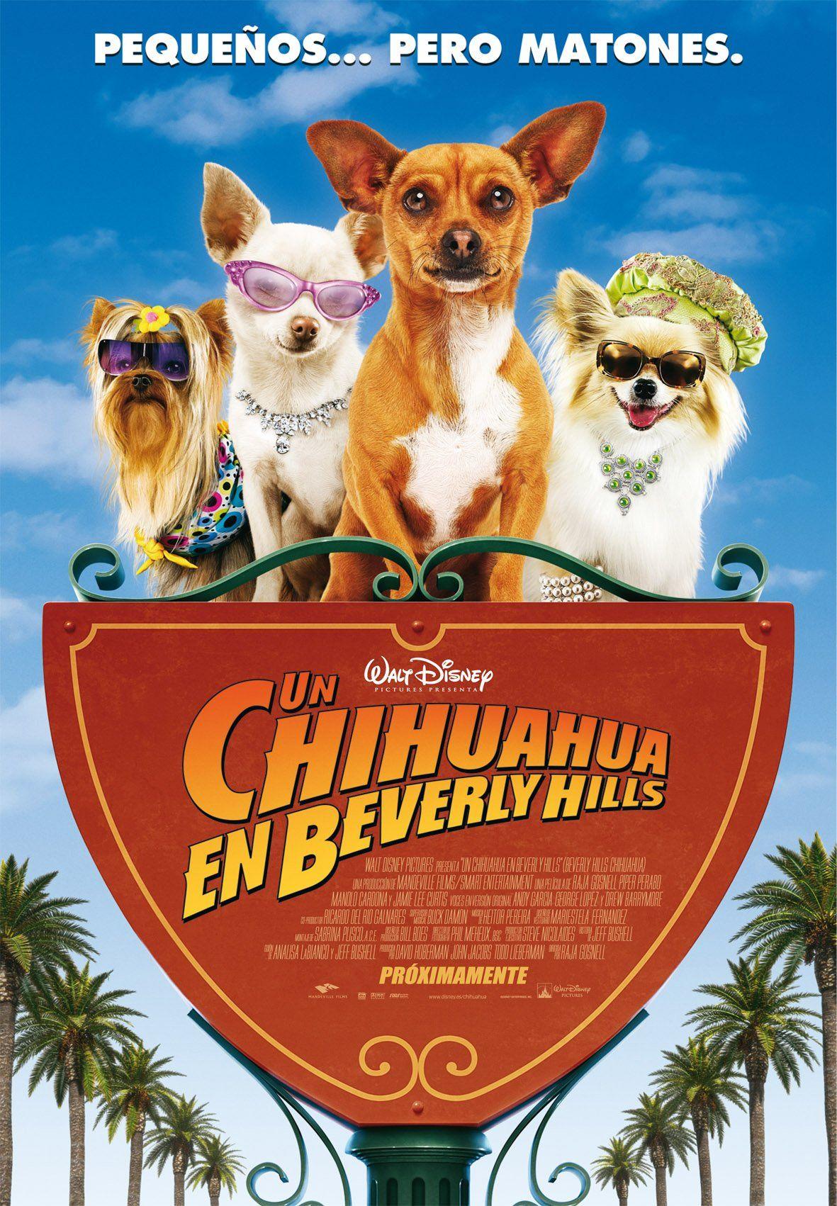 Un chihuahua en Beverly Hills   Películas