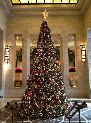 Santa Claus Travel Egypt Christmas Tree Holiday Christmas Tree Christmas Tree Christmas Lights