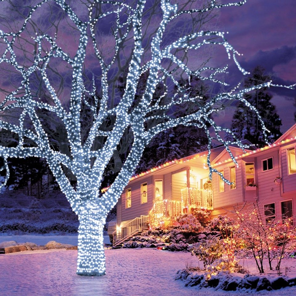 100 blue led connectable lights led fairy lights christmas lights - Chaser Christmas Lights