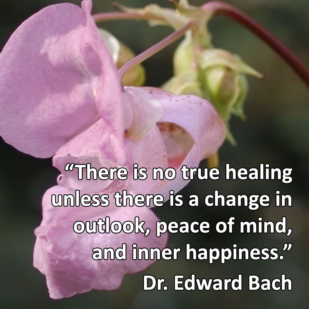 There Is No True Healing Unless There Is A Change In Outlook Peace Of Mind And Inner Happiness Quote From Dr Bach Flower Remedies Bach Remedy Remedy Quote