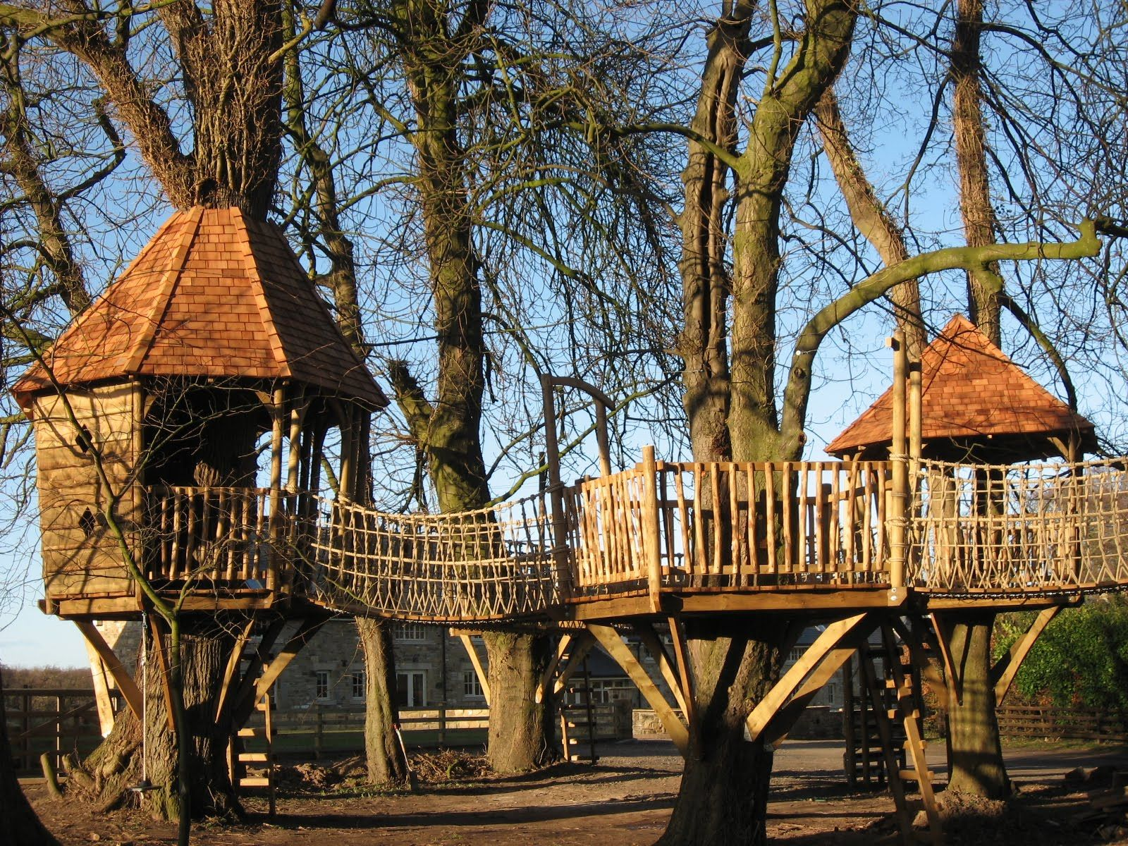 Beautiful Sensational Tree House With Cute Orange Roof And Fancy Wood And Rope Bridge Tree  Platform Design: Robust And Beautiful Tree Platform Design Artworks