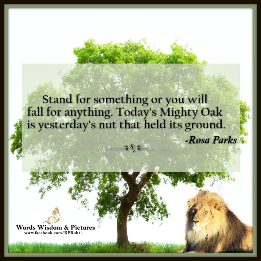 STAND FOR SOMETHING ღ♡ღ #quote