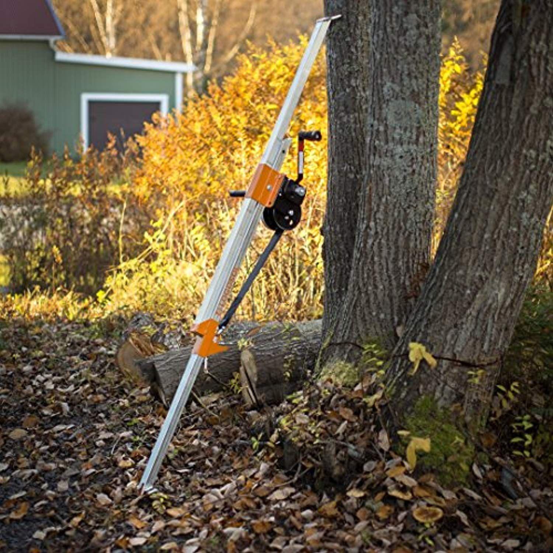 Pin By J Garrett On Built Not Bought Tree Felling Forestry