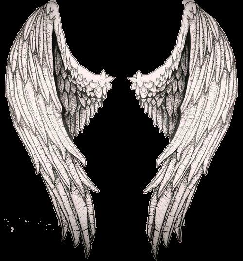 I Ll Make You Fly Nikolas Snart Wings Drawing Wings Sketch