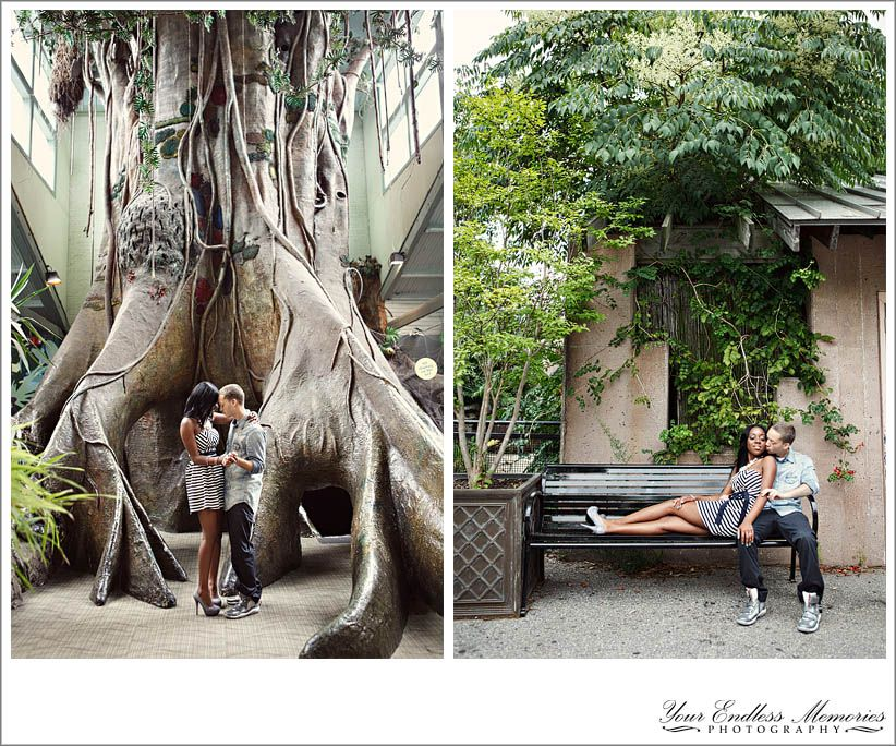Philadelphia Zoo Engagement Pictures 03