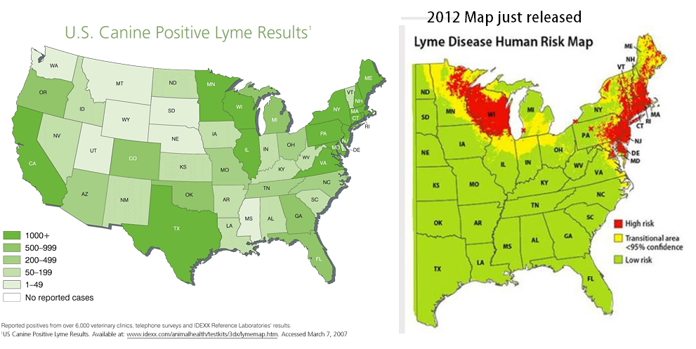 If Veterinarians Treat Lyme Disease Long Term Why Dont Doctors - Map Of Ticks In Us