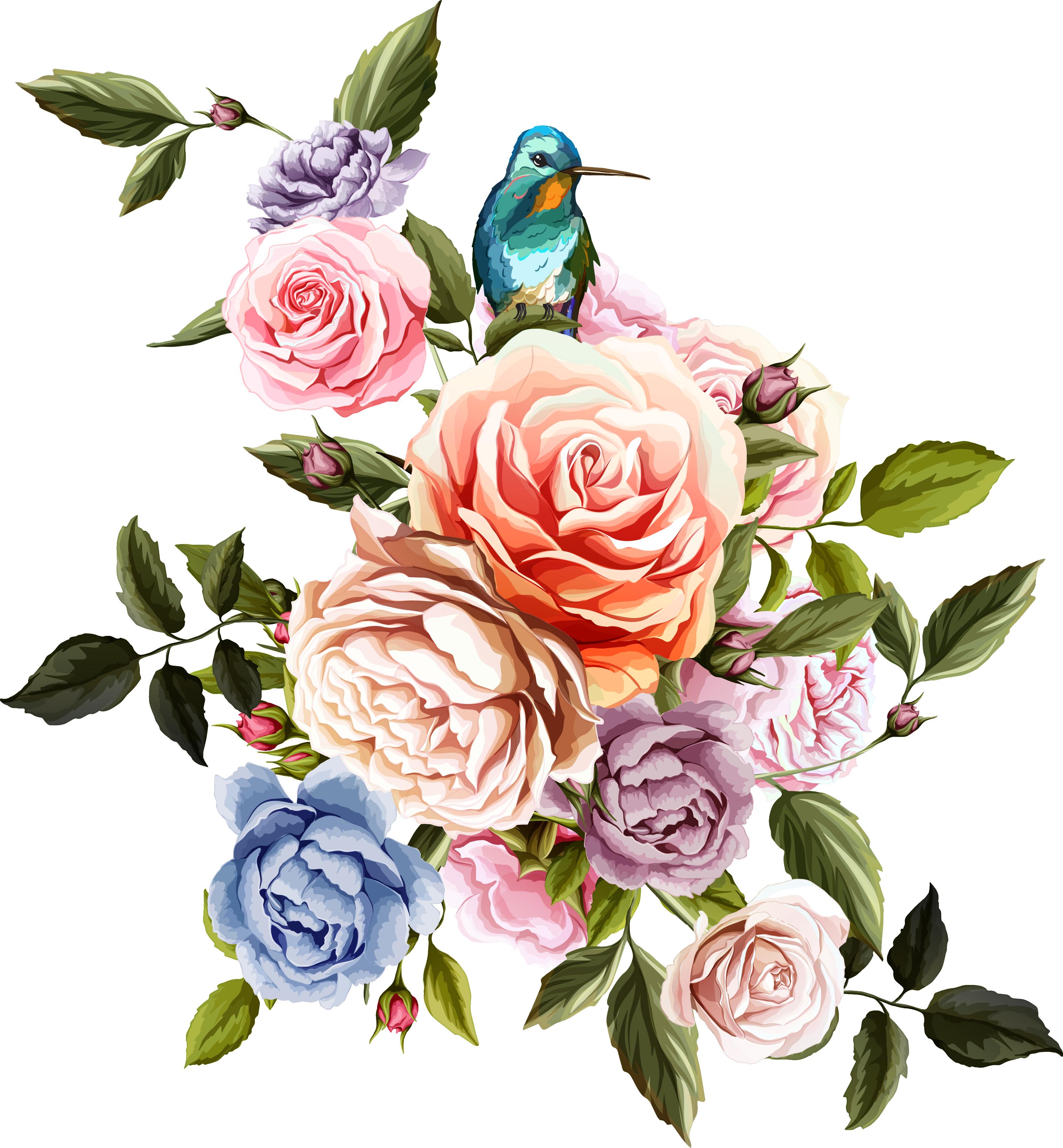 Beach rose Flower Euclidean vector Flowers and birds