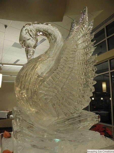 Labuť * z ledu