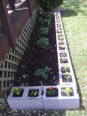 Maceteros con bloques de cemento jardiner a pinterest - Maceteros de cemento ...