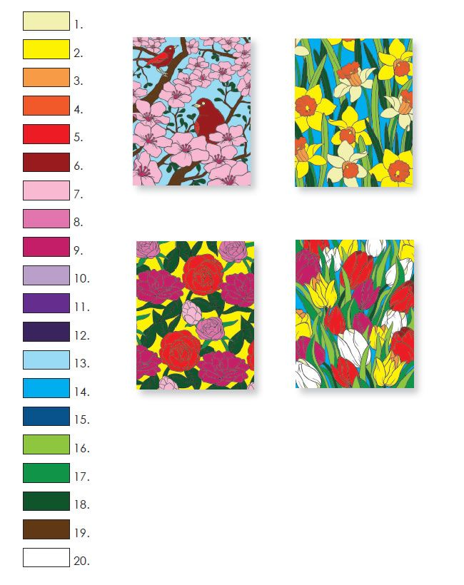 Creative Haven FLORAL DESIGNS PAINT BY NUMBER By Jessica Mazurkiewicz
