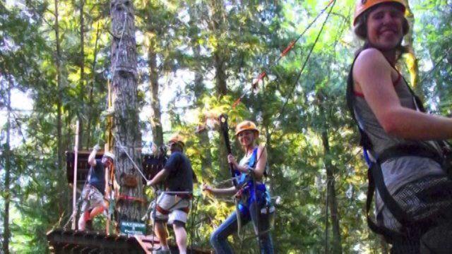 Pin On Zipline Adventures