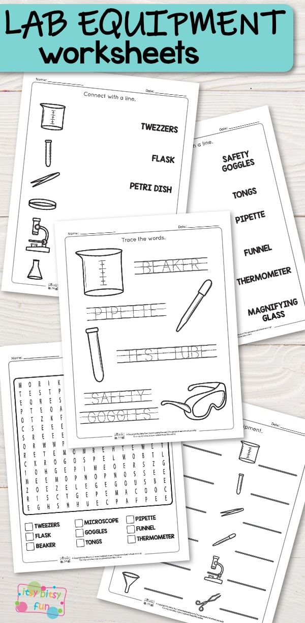 Lab Equipment Worksheets Lab equipment, Worksheets for