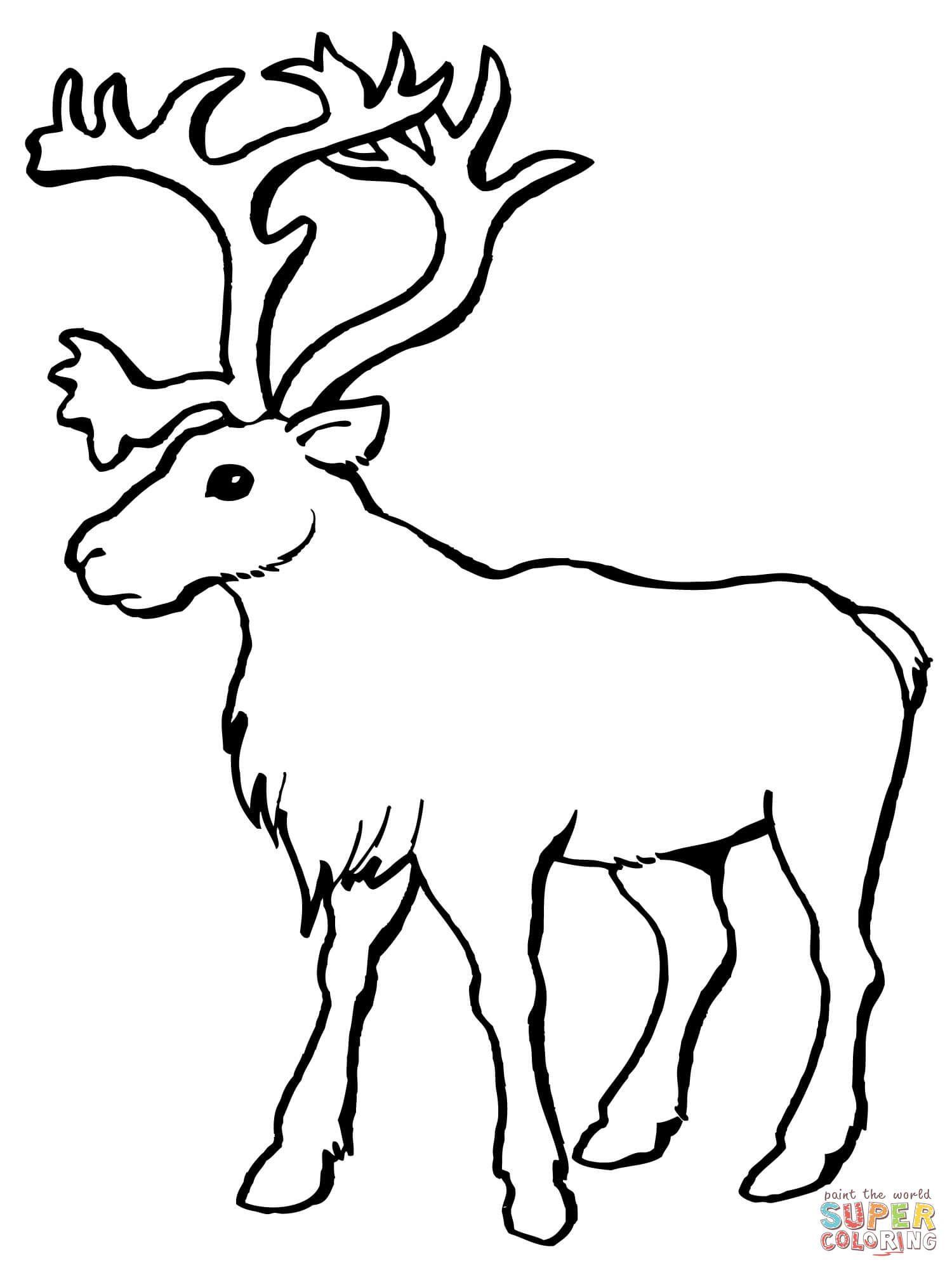 Reindeer Caribou Coloring Page Free Printable Coloring Pages Deer Coloring Pages Animal Coloring Pages Reindeer Drawing