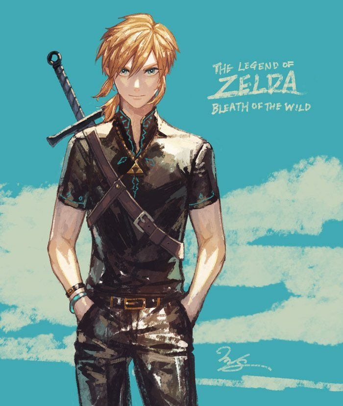 Modern Botw Link Legend Of Zelda Breath Legend Of Zelda