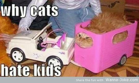 Pinterest Humor - Funny Pictures @ http://pinteresthumour.com