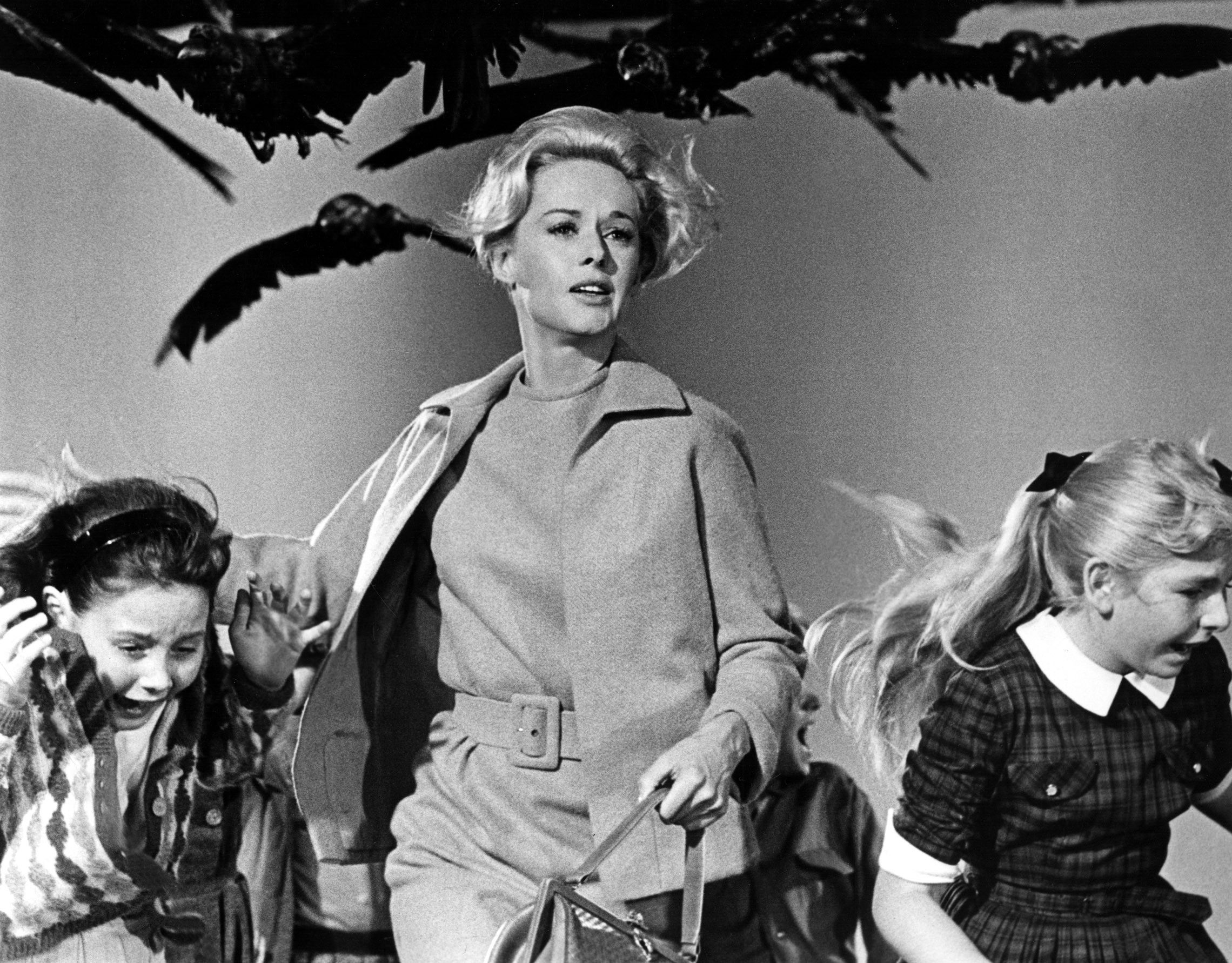 Alfred Hitchcock The Birds - Google Search
