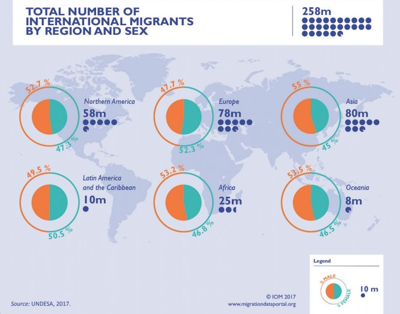Characteristics Of Migrants Infographic With Images Ap Human
