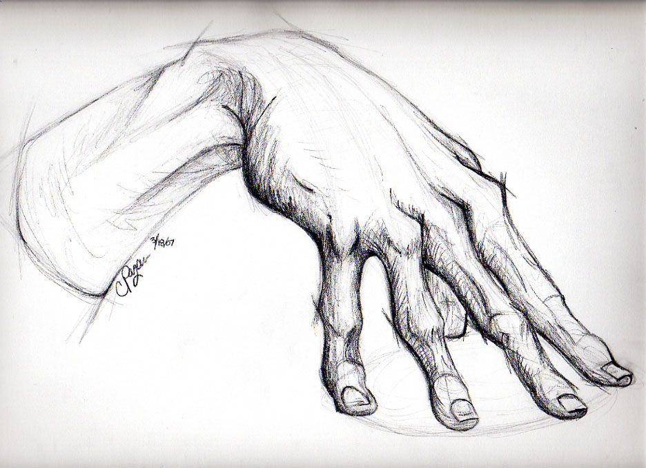 how to draw right hand