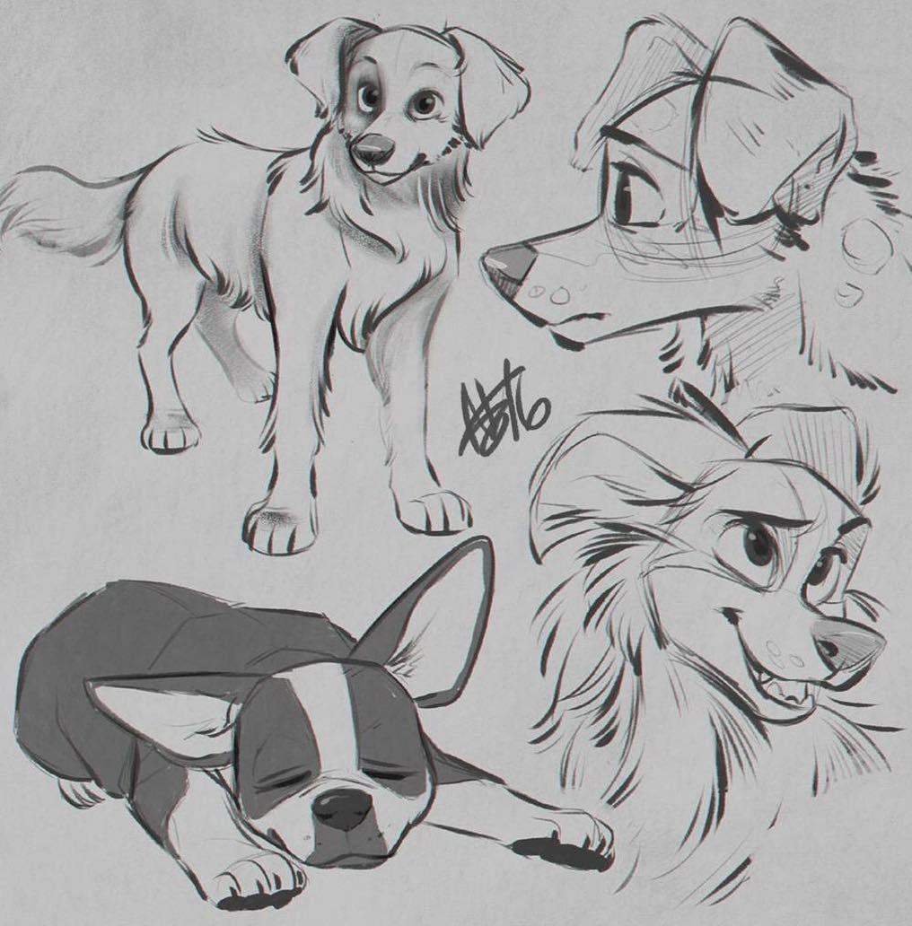 "Nikki | ♀ She/Her | 22 | SoCal on Instagram: ""[Warm-ups] Dogs!"""