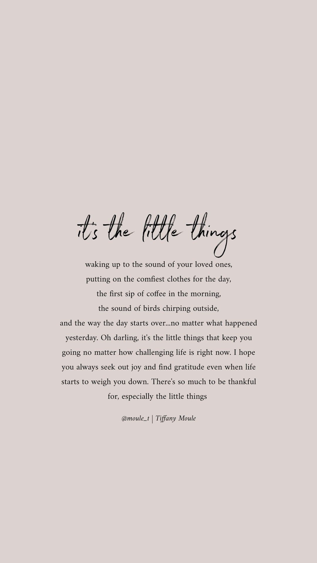It's the little things in life that give the most #gratitude #quote #grateful #mindful