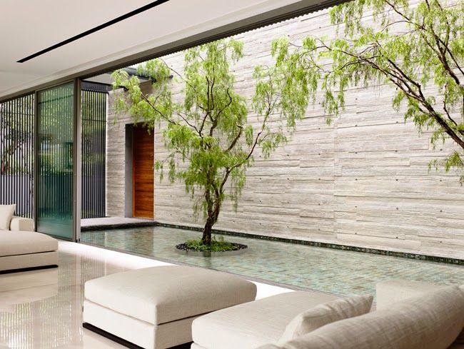 Casas Minimalistas y Modernas patios Espejo de agua Pinterest - casas minimalistas