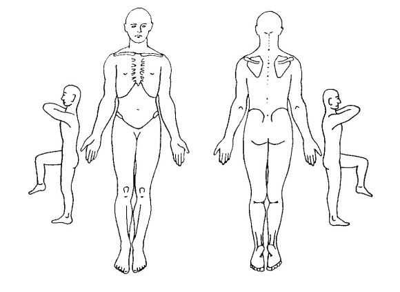 Picture Of The Human Outline Body Front And Back 580x423