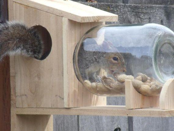 Squirrel Feeder Of Solid Cedar With Vintage Gallon Jar